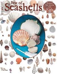 Best Book Of Seashells