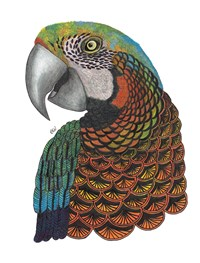 TangleEasy Lined Journal Parrot