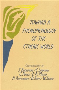 Toward a Phenomenology of the Etheric World