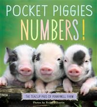 Pocket Piggies Numbers!