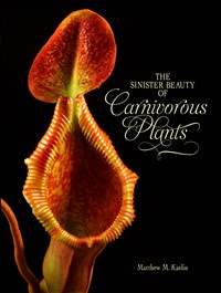 SINISTER BEAUTY OF CARNIVO (Hardback)