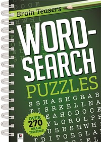 Brain Teasers Wordsearch Puzzles 2