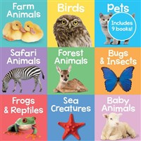 Building Blocks Cased Learning Tray Animals