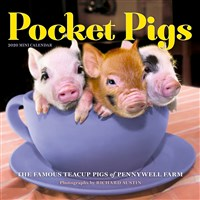 Pocket Pigs Mini Wall Calendar 2020