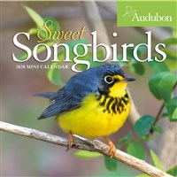 Audubon Sweet Songbirds Mini Wall Calendar 2020