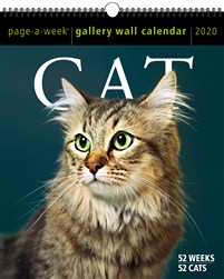 Cat Page-A-Week Gallery Wall Calendar 2020