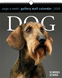Dog Page-A-Week Gallery Wall Calendar 2020