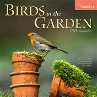 Audubon Birds in the Garden Wall Calendar 2021