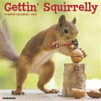 Gettin' Squirrelly 2020 Wall Calendar