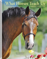 What Horses Teach Us 2020 Engagement Calendar