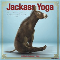Jackass Yoga 2020 Wall Calendar