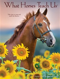 What Horses Teach Us 2021 Engagement Calendar