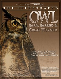 Illustrated Owl: Barn, Barred & Great Horned