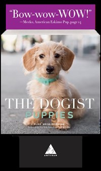 The Dogist Puppies 5-copy counter display