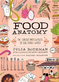 Food Anatomy