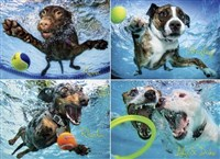 Underwater Dogs 2 1000-piece Puzzle