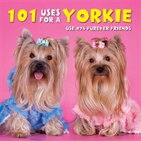 101 Uses For a Yorkie