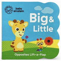 Baby Einstein Big and Little