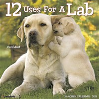 2018 12 Uses for a Lab Wall Calendar