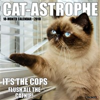 2018 Cat-Astrophe Wall Calendar