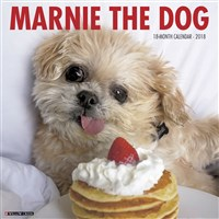 2018 Marnie the Dog Wall Calendar