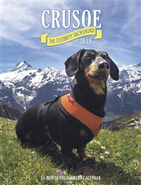 2018 Crusoe the Celebrity Dachshund Engagement Calendar