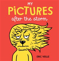 MY PICTURES AFTER THE STORM (Hardback)