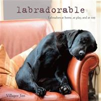Labradorable