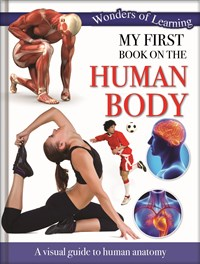 My First Book on the Human Body – 48pp Padded Foil Omnibus