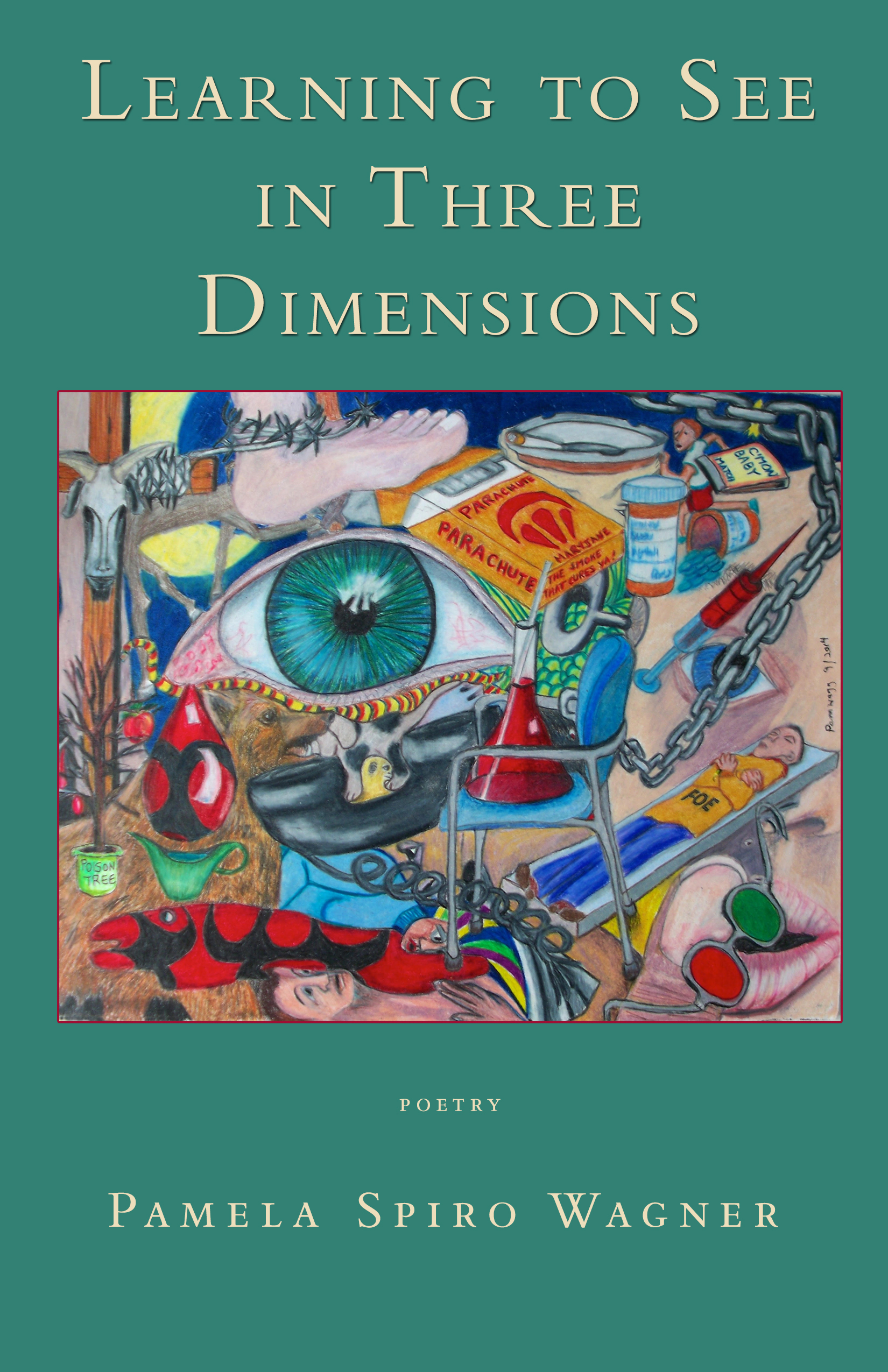 Learning to See in Three Dimensions