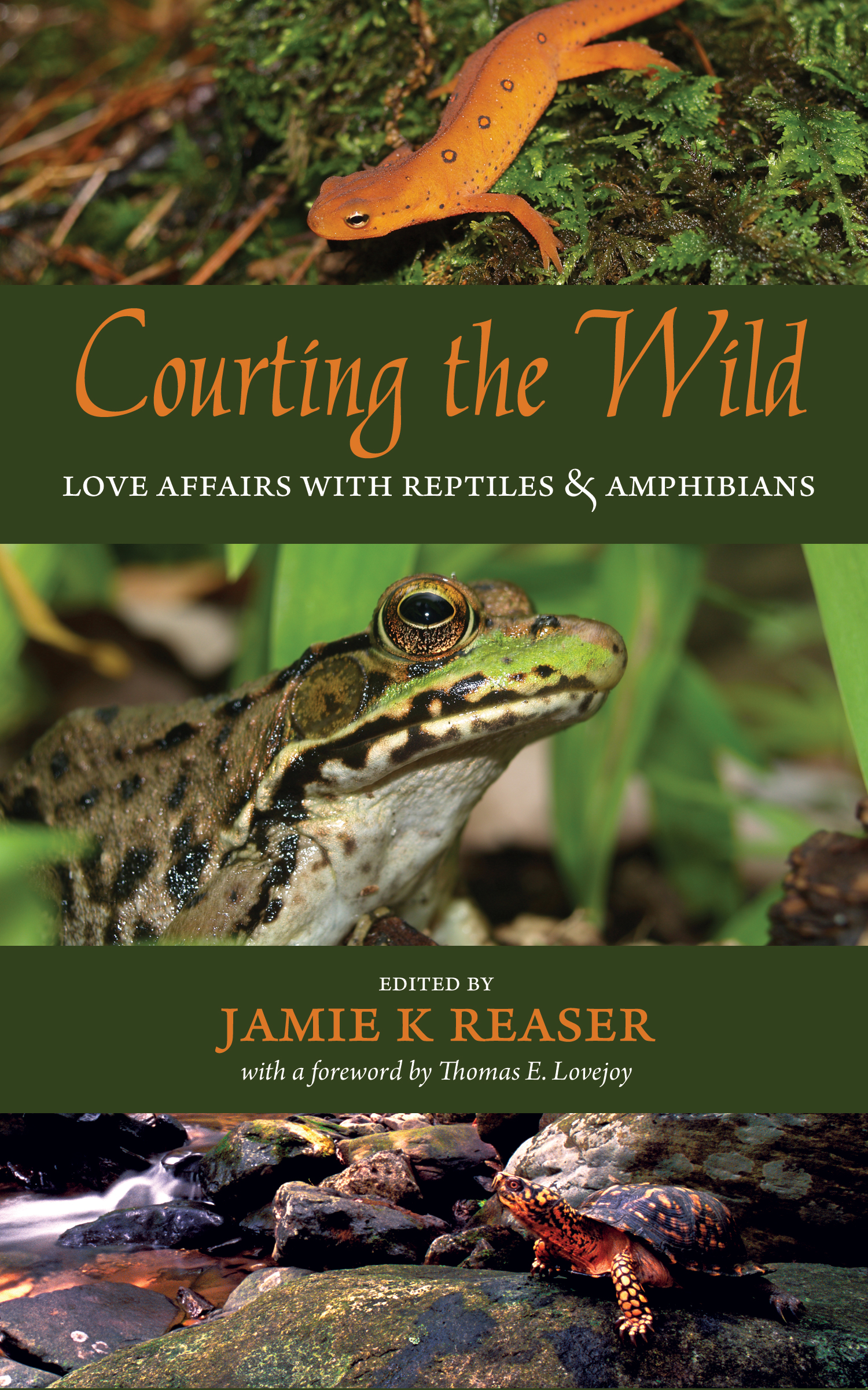Courting the Wild: Love Affairs with Reptiles and Amphibians