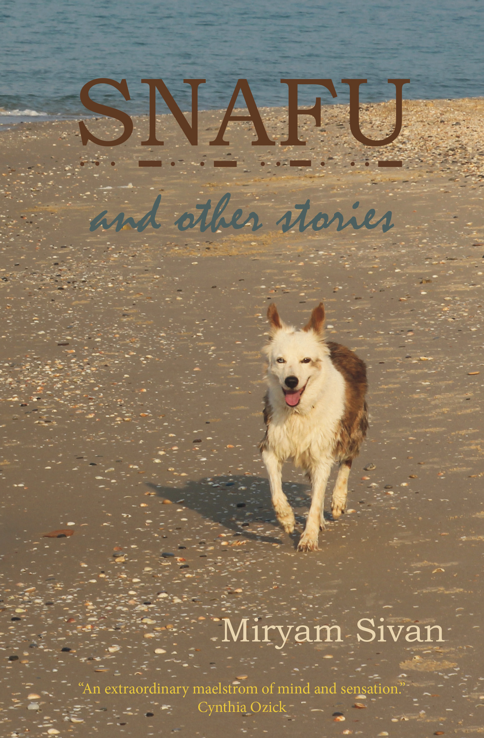 SNAFU and Other Stories