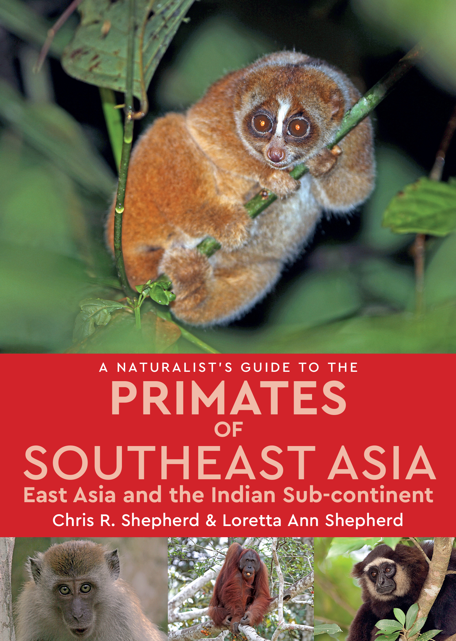 A Naturalist's Guide to the Primates of Southeast Asia