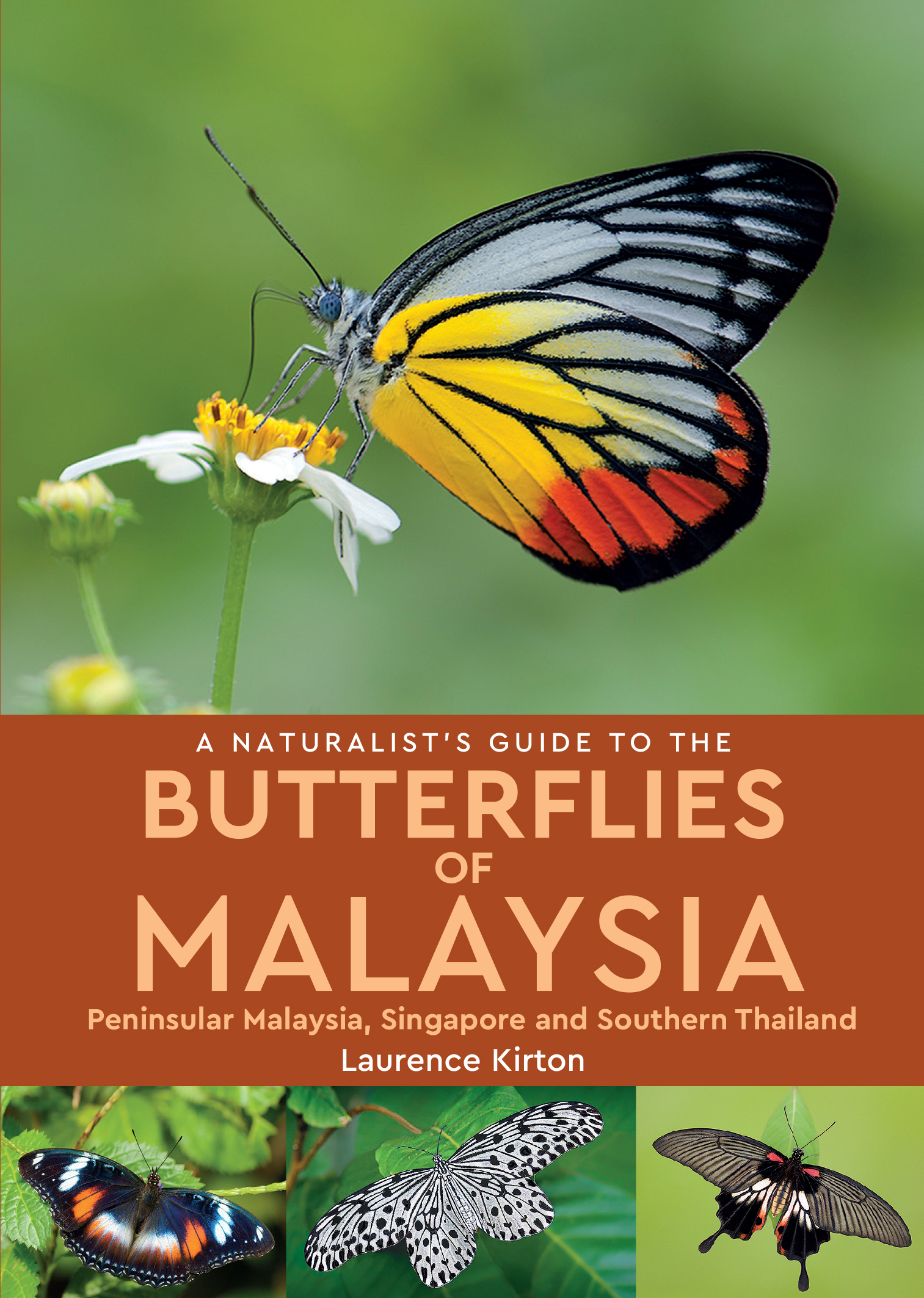 A Naturalist's Guide to the Butterflies of Malaysia