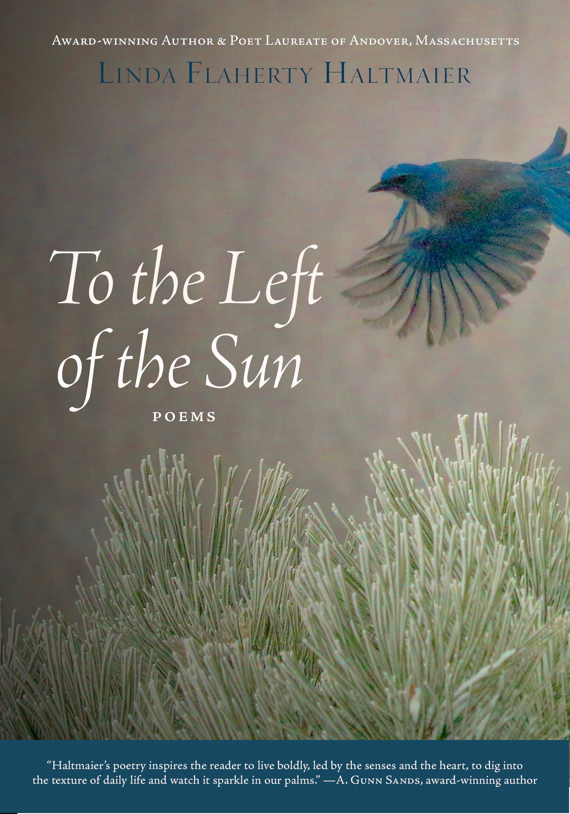 To the Left of the Sun