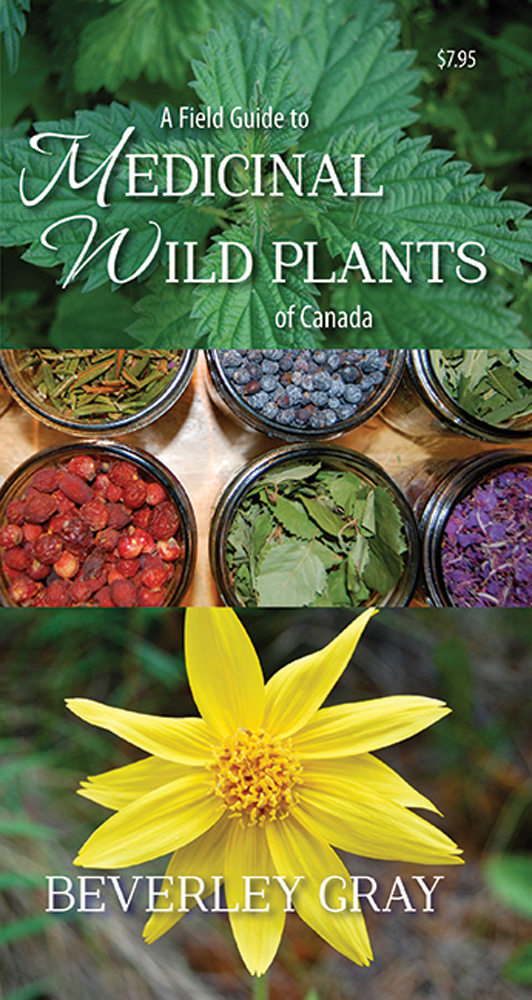 A Field Guide to Medicinal Wild Plants of Canada