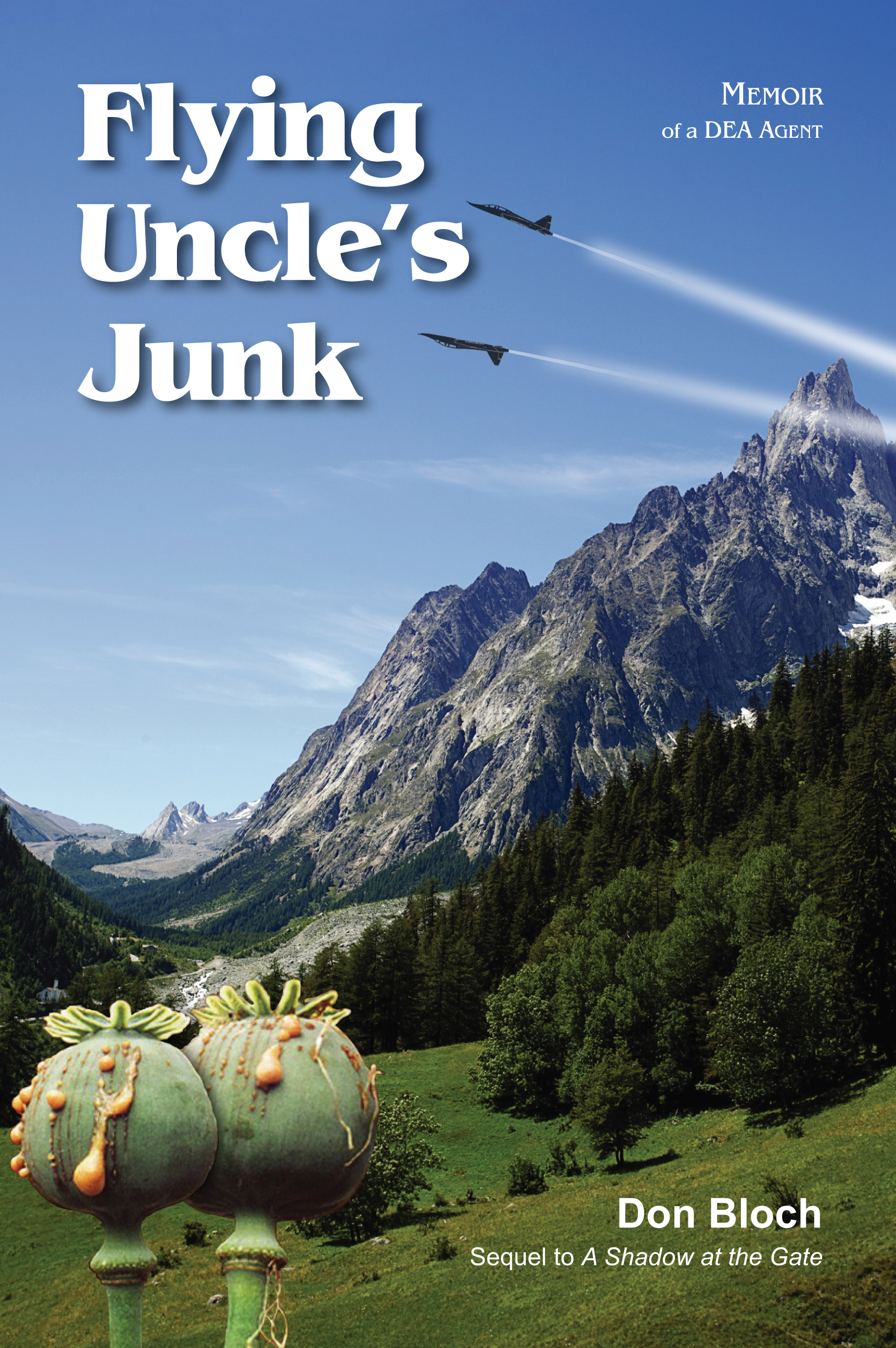 Flying Uncle's Junk
