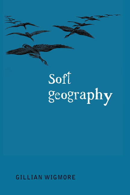Soft Geography