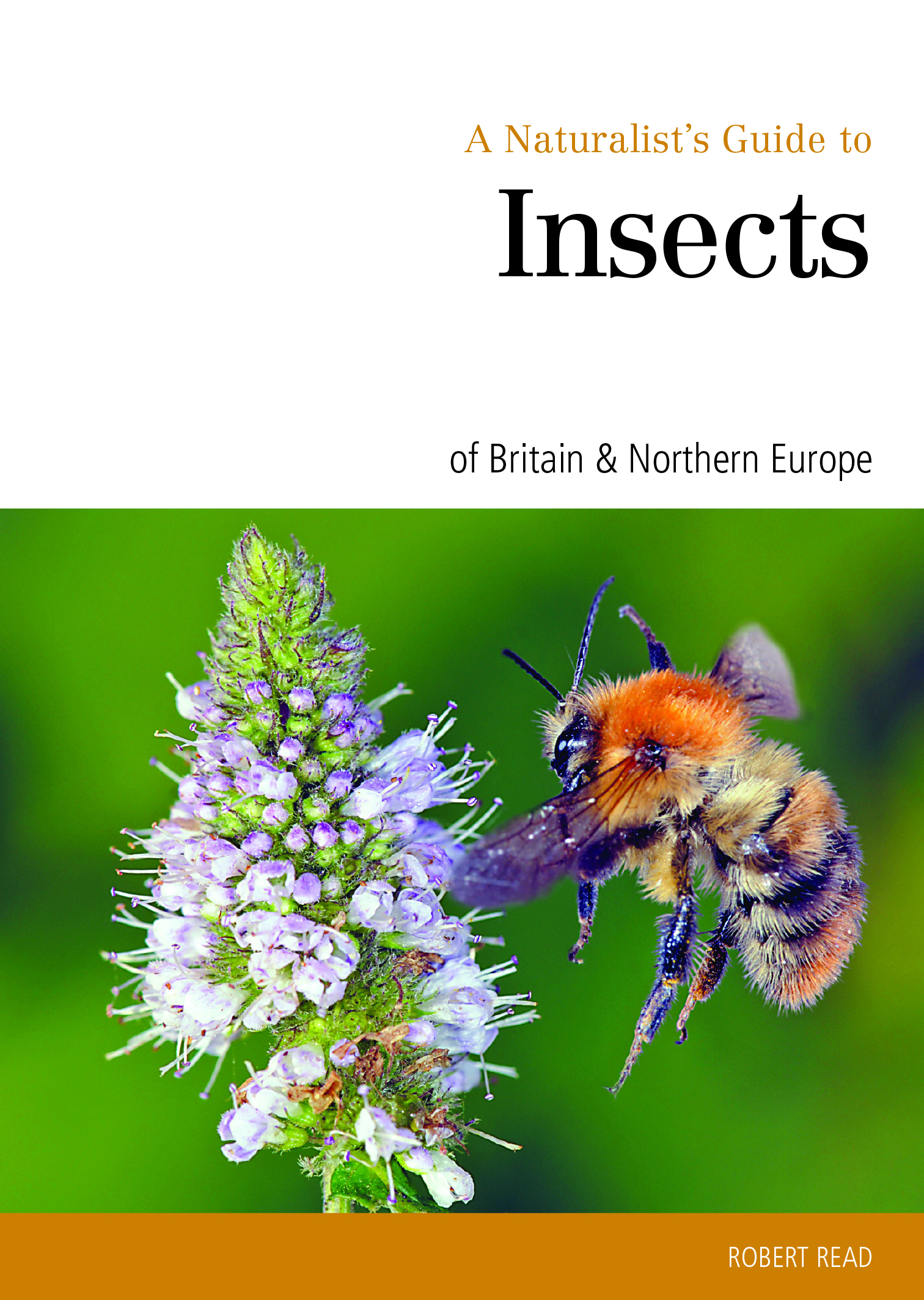 A Naturalist's Guide to the Insects of Britain & Northern Europe