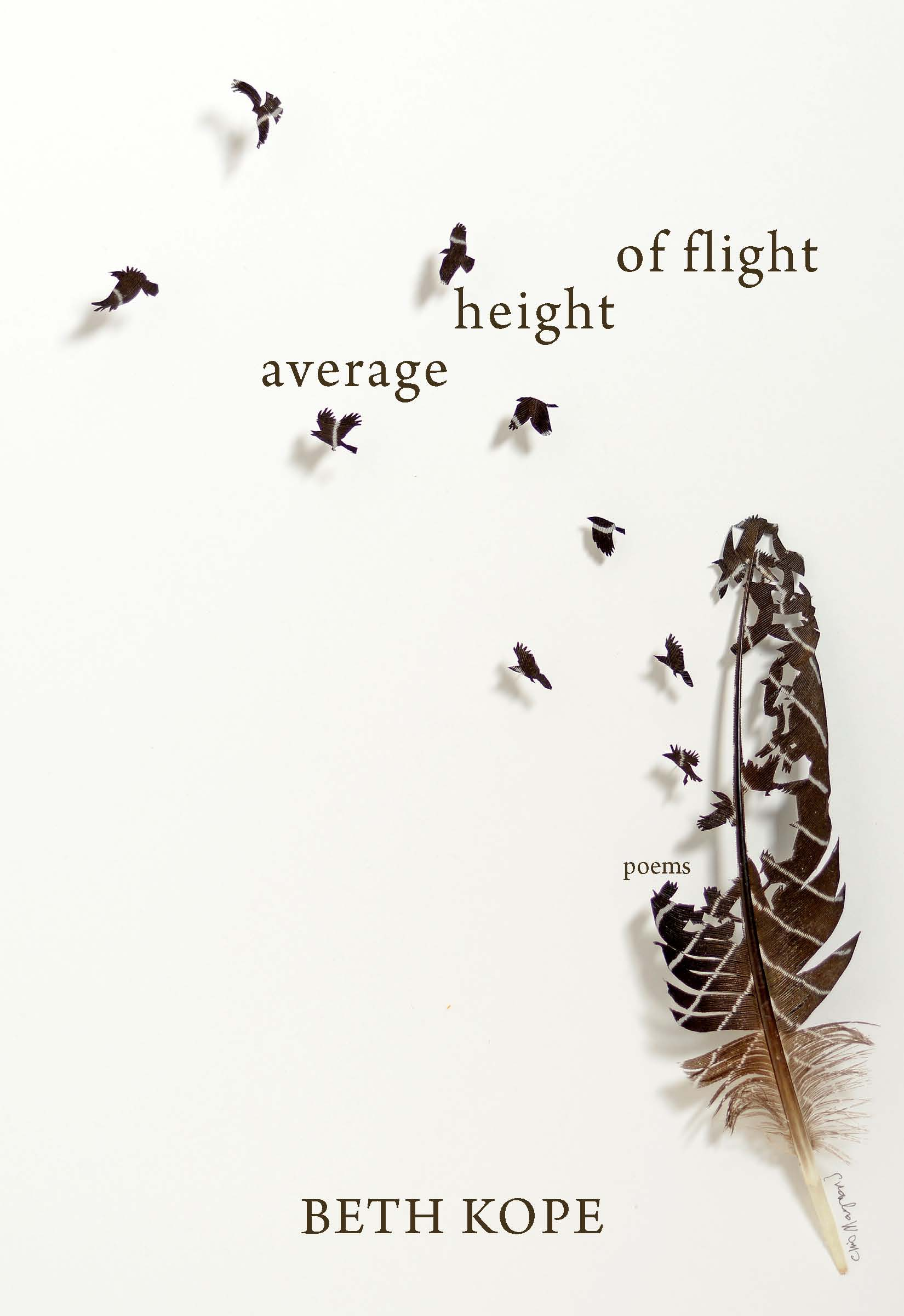The Average Height of Flight