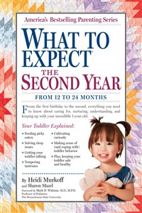 What to Expect: The Second Year Counter Display 6-Copy