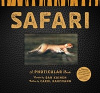 Safari Counter Display 6-Copy