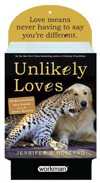 Unlikely Loves 6 Copy Counter Display