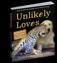 Unlikely Loves 18 Copy Mixed Floor Display (12 Unlikely Loves, 6 Unlikely Friendships)
