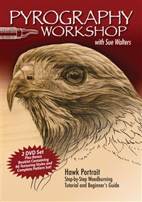 Pyrography Workshop with Sue Walters DVD