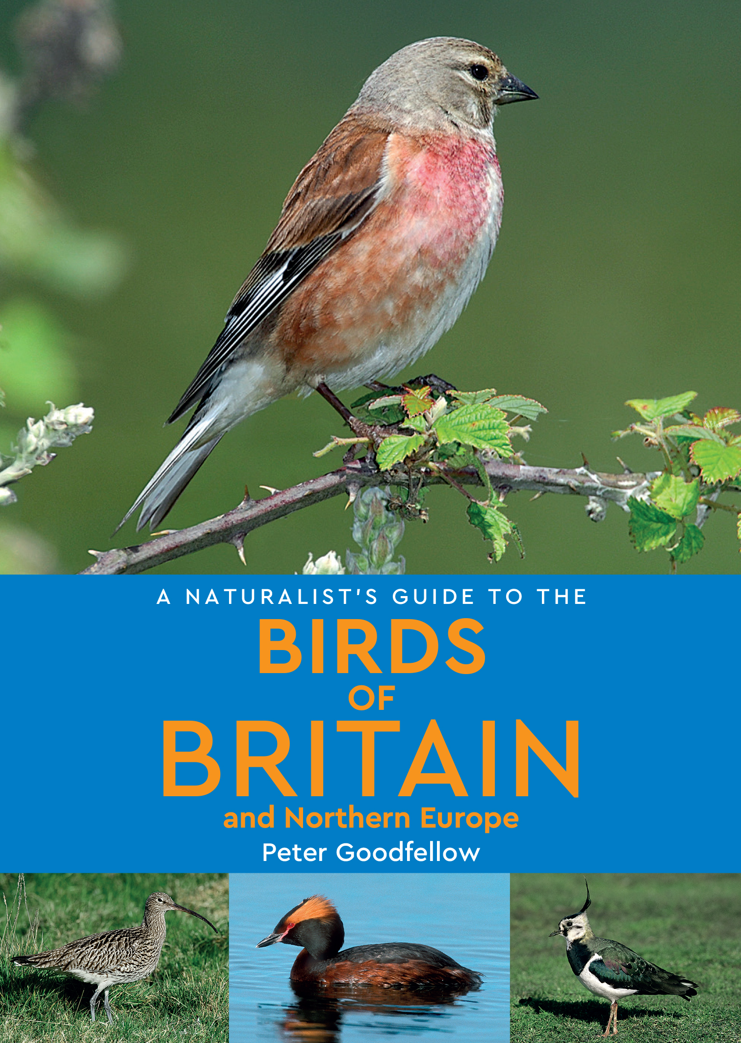 A Naturalist's Guide to the Birds of Britain & Northern Europe
