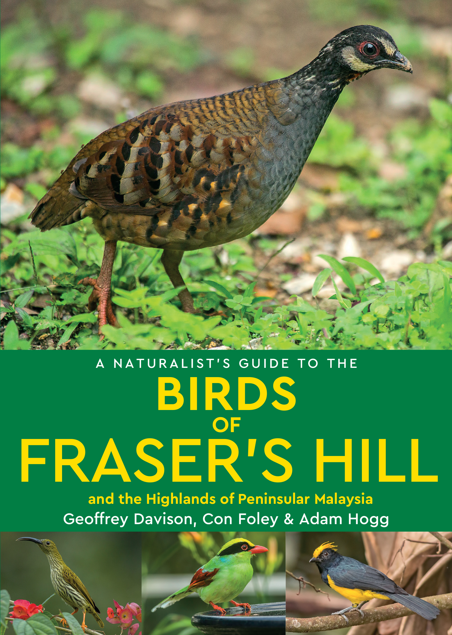 A Naturalist's Guide to the Birds of Fraser's Hill & the Highlands of Peninsular Malaysia