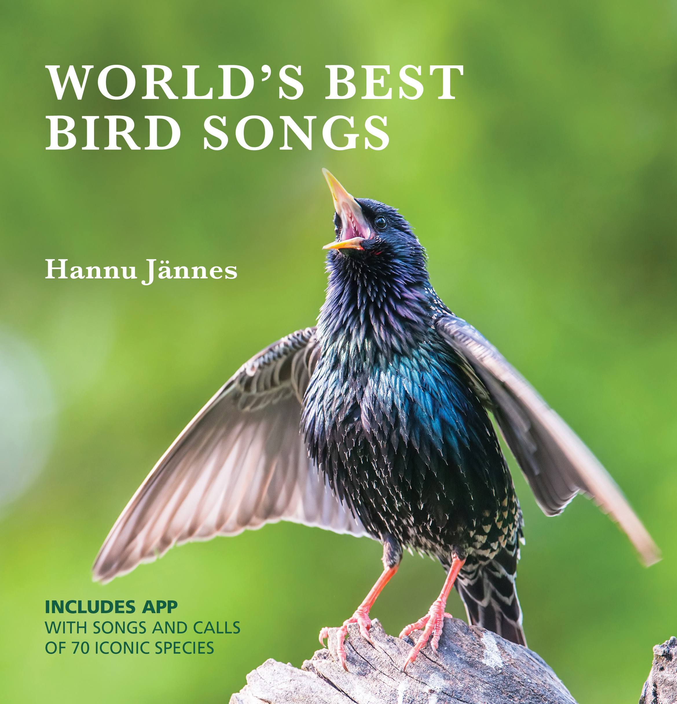 World's Best Bird Songs