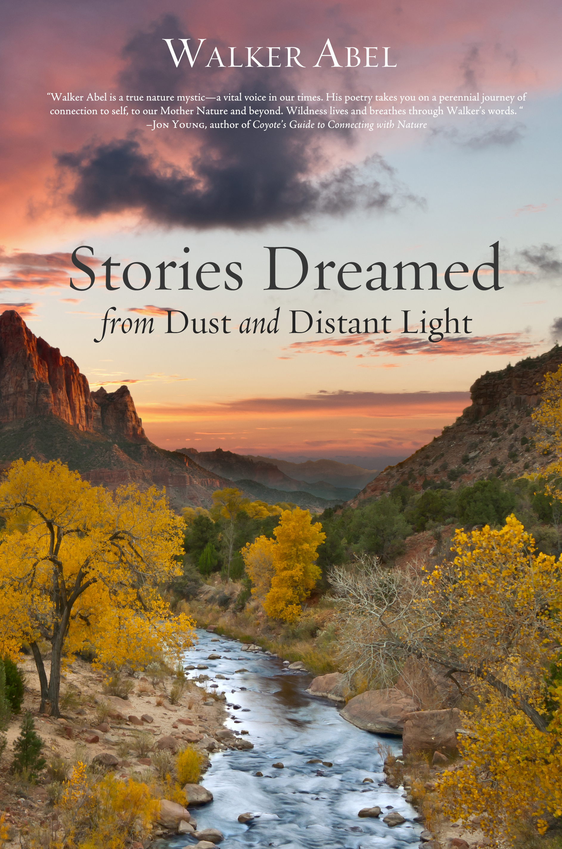 Stories Dreamed from Dust and Distant Light