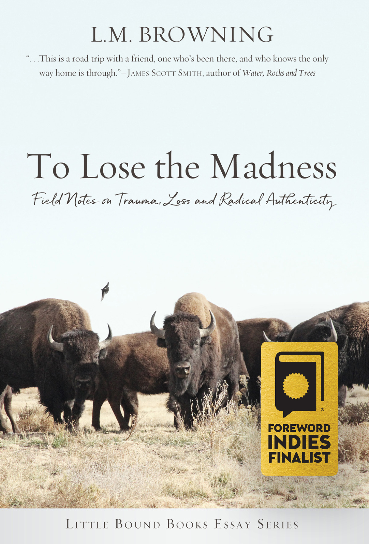To Lose the Madness